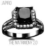 JAPIRO - The Matrimony 2.0