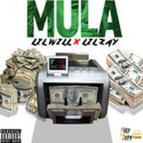 lil will - Mula Cover Art