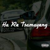 Masedi ZA - Ha Re Tsamayeng Cover Art