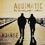 Audimatic (The Audible Doctor & maticulous) - Hoarse