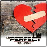 Mic Mash - I'm Not Perfect Cover Art