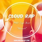 Mister Lazy - SOLD /// Namek - PNL Type Beat - Cloud Rap Instrumental Cover Art