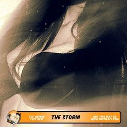 Mister Lazy - The Storm - The Weeknd Type Beat Cover Art