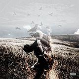 Mixtape Republic - Days Before Birds Cover Art