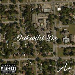 MONIFA - Oakwild Dr. Cover Art