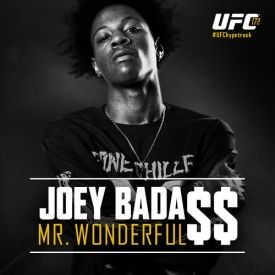 joey-badass-mr-wonderful-audio-mp3