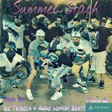 Nel Nice - Summer Stash Cover Art