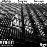 NeRo AnGeLo - Put In Work (ft. Ali Buckets & Sunny Ture) Cover Art