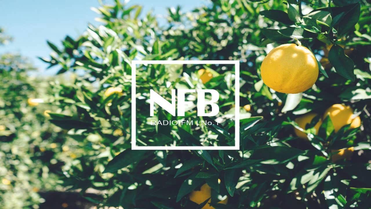 Fools Garden - Lemon Tree + download - YouTube