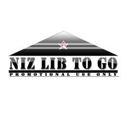 Niz Lib To Go - Wait Na Cover Art