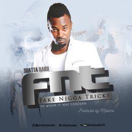 NY DJ - Fake nigga tricks (FNT) (prod. by 1kwame) . Cover Art