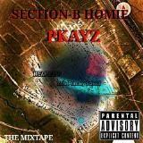 PKAYZ - SECTION-B HOMIE Cover Art