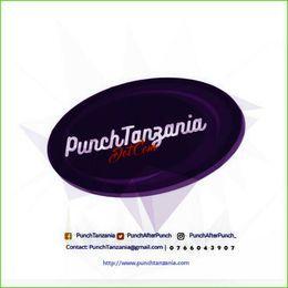 PunchTanzania.com - Phone Cover Art