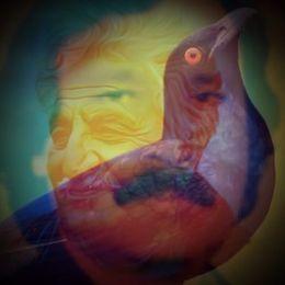 Sardar Ali Takkar - TORANAY  تورانې ـ عبدالغني خان Cover Art