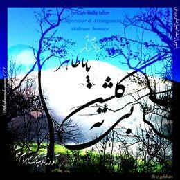 Shahram  homaee - Bi te golshan   بی ته گلشن Cover Art