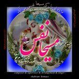 Shahram  homaee - Masiha nafas   مسیحا نفس Cover Art