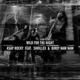 Dj Skramblah - Wild For The Anthem(Skramblah Mix) Cover Art