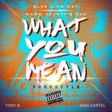 slumlifetonyb - What You Mean (Freestyle) Cover Art