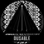 The Boy Illinois - FakeShoreDrive & The Ambulance Factory Present: DuSable Cover Art