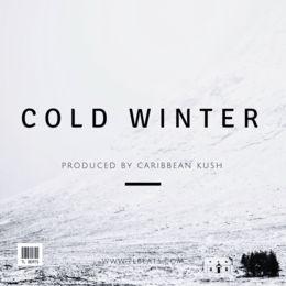 TL Beats - Cold Winter Cover Art