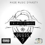 T.R.I.P (god mc) - Guess Cover Art