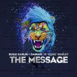 TSNR None-Stop Ent ® - The Message Cover Art