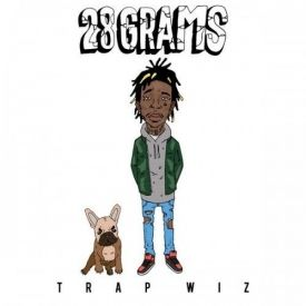 WeGotHipHop - Wiz Khalifa - 28 Grams Cover Art