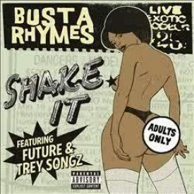 Busta Rhymes - Shake It