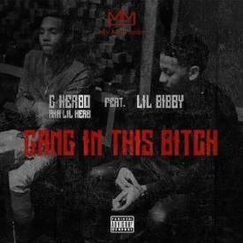 Gang In This Bitch Feat. Lil Bibby
