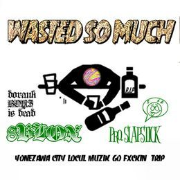 8BLOX - WASTED SO MUCH Cover Art