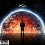 The Mazes - Ignorant Fools (Prod. Nash_Buda) Cover Art