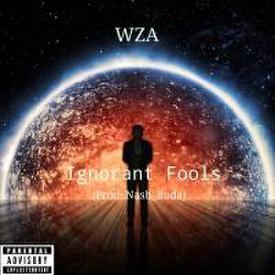 Ignorant Fools (Prod. Nash_Buda)