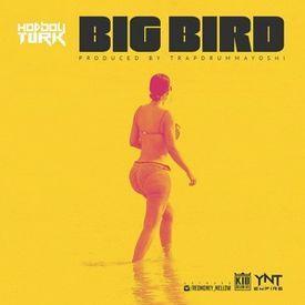 Big Bird (Prod. By @trapdrummayoshi)