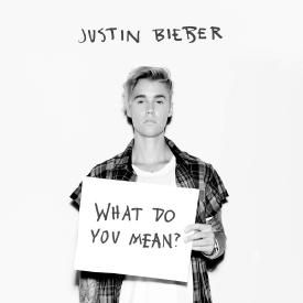 What Do You Mean? (Indecisive Mix)