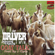 Goat Talk (Feat. Young Crazy & Young Money Yawn)(Prod. By J.Clyde)