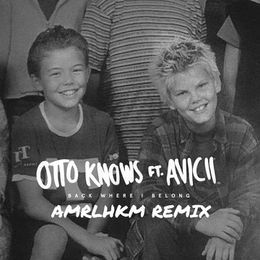 AMRLHKM - Back Where I Belong (AMRLHKM Remix) Cover Art