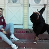 King Vibez - Caged Bird Cover Art