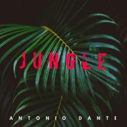 Antonio Dante - Jungle Cover Art