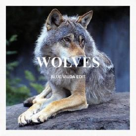 Wolves (Blue Viuda Edit)