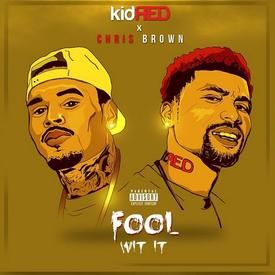 Fool Wit It  (feat. Chris Brown)