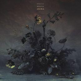 Audiomack Electronic - Akira Cover Art