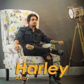 Harley A Kay