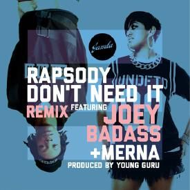 Don't Need It (RMX)