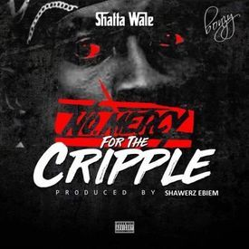 No Mercy For The Cripple (StoneBwoy Diss)