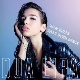 Dua Lipa - New Rules ( Billy Bush Remix)