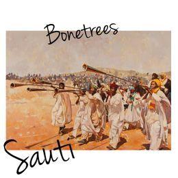 bonetrees - Sauti Cover Art