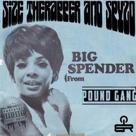 Big Spender- Shirley Bassey Remix