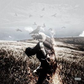 Raw Raw (Feat. Lil Uzi vert) [Prod. By 808Mafia]