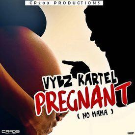 Pregnant (No Mama)
