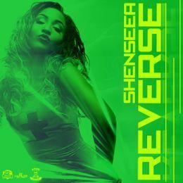 Bramkush Entertainment - Reverse Cover Art